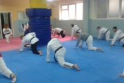Тренинг формаша-Шабац
